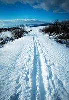 Winter snowy countryside photo