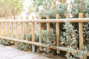 Decorative wooden fence and white green bushes
