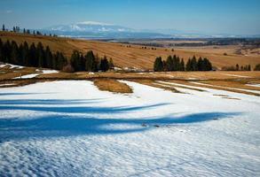 prado parcialmente cubierto de nieve foto