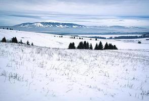 paisaje nevado en las tierras altas foto