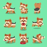 Vector cartoon character yorkshire terrier dog poses set