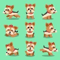Cartoon character yorkshire terrier dog poses set vector
