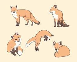 ilustración de zorro animal salvaje vector