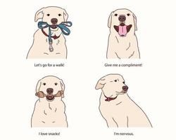 varias expresiones de golden retriever.