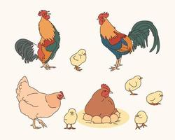 Rooster Hens and Chicks illustration vector