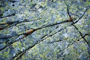 roca de granito agrietada con musgo amarillo foto