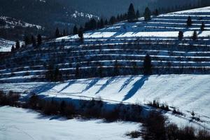 paisaje de invierno con sombras foto