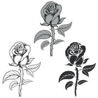 Vector design of flowers in three different styles, black and white