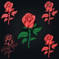 flor rosa con espinas vector