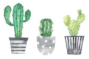 Establecer plantas de interior en macetas pintadas en acuarela. vector