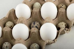 Raw chicken and quail eggs in a carton container photo