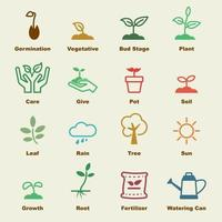 sprout vector elements