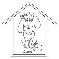 adorable mascota. Una niña de perro blanco con un moño en la oreja y la lengua fuera está sentada en una casa