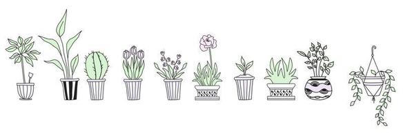 Set of cute indoor plants in pots, hand-drawing. Botanical set - a lot of flowerpots - cactus, tulips, flowers, sprouts. Line vector drawing