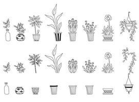 Set of different indoor plants. Botanical set - flowerpots, pots, flowers, leaves. vector