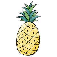 Ilustración de vector dibujado a mano de piña de fruta de vacaciones de verano aislado en backgraund blanco