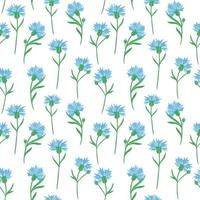 Seamless background with cornflowers. Vector. Delicate solid floral pattern.Blue little wildflowers. vector