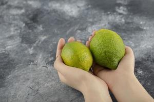 Woman hands holding two green fresh lemons photo