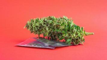 Marijuana bud and condoms photo