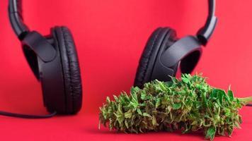Cannabis bud and headphones photo