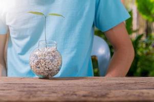 una persona plantando árboles en macetas, concepto por amor a las plantas y al medio ambiente foto