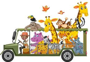 Zoo concept with wild animals in the car isolated on white background vector