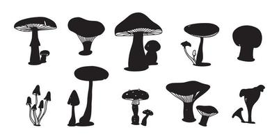 Mushroom colorful doodle set. various Mushrooms hand drawn flat sketch. Champignon, chanterelle and shiitake. vector