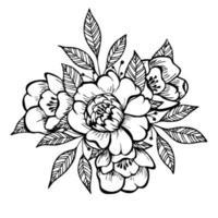 Doodle arte flor y hoja aisladas sobre fondo blanco. flor de peonía illuatration dibujada a mano. vector