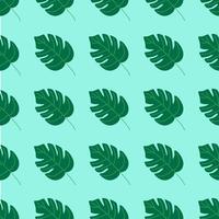 patrón de verano sin fisuras, hojas de monstera sobre un fondo turquesa. ilustración vectorial plana vector