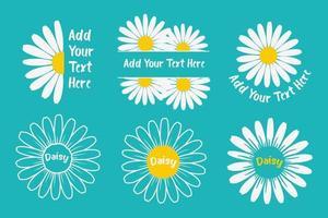 flores de margarita planas con espacio para agregar conjunto de texto vector