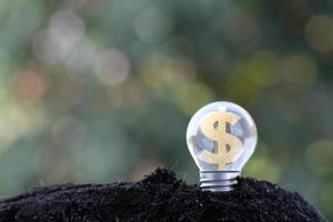 Energy saving light bulb and business or business growth concept photo