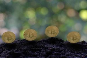 Bitcoin cryptocurrency coin and euro coin on soil, concept photo
