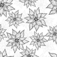 Seamless Merry Christmas pattern. Poinsettia in doodle line style on white background. vector