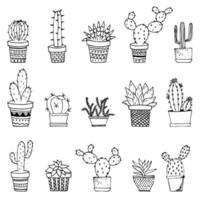 Cacti and succulents doodles illustration. Home plants in pots and cups. vector