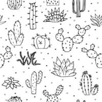 Seamless cactus and succulents doodles illustration. Can be used elements design and fabric. vector