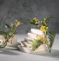 Modern art still-life with concrete elements and mimosa flowers photo