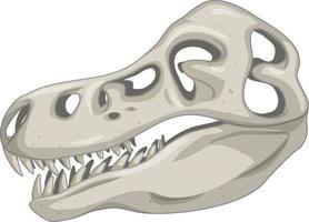 Skull of dinosaur skeletons on white background vector