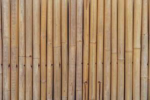 Fondo de textura de pared de bambú largo foto