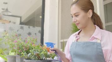Small Business. Asian Female Florist Watering and Take Care Her Fresh Flower. Seller or Gardener Spraying Water on Plant