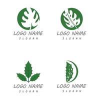 Monstera leaf logo vector design