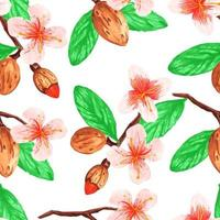 Watercolor seamless pattern with almonds and branches vector