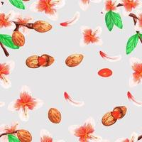 Watercolor seamless pattern of almonds and branches vector