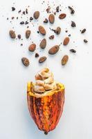 Vaina de cacao fresco y frijoles aislado sobre fondo blanco. foto