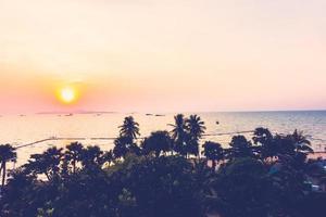 palmeras silueta foto