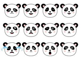 Panda bear vector design illustration isolated on white background