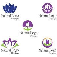Lotus flowers logo template vector