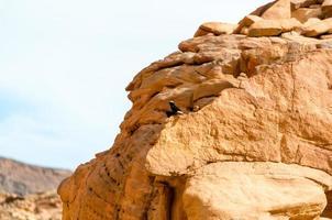 primer plano, de, rocas, con, cielo azul foto
