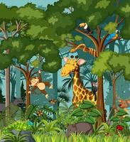 Wild animal cartoon character in the forest scene vector