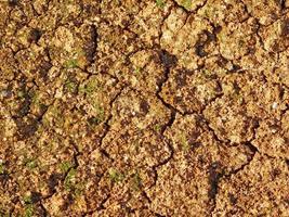 parche de tierra para el fondo o la textura foto