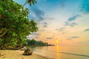 Beautiful paradise island with beach and sea around coconut palm tree
